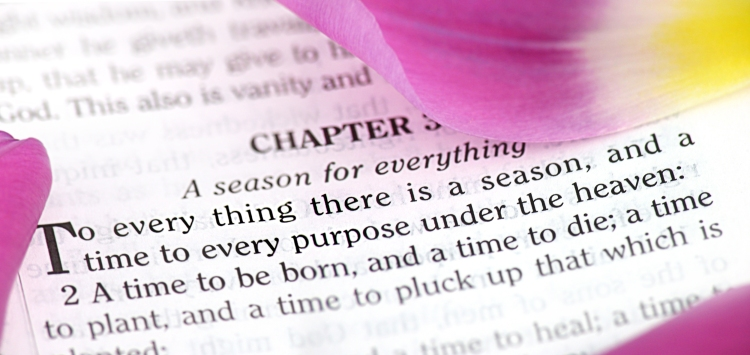 To Every Thing There Is a Season (KJV)